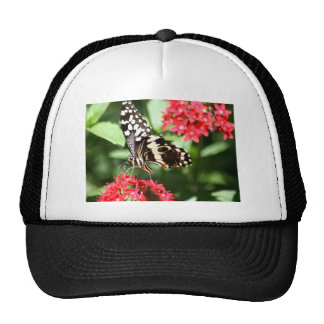Zebra Striped Butterfly Trucker Hat