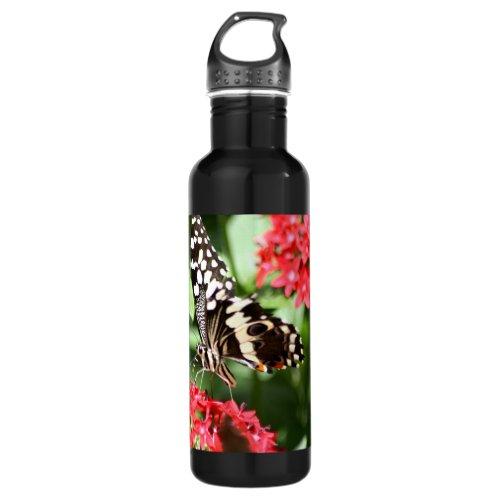 Zebra Striped Butterfly Water Bottle