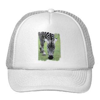 Zebra Stripes Baseball Hat