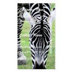 Zebra Stripes Business Card