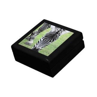 Zebra Stripes Gift Box