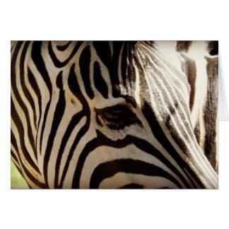 "Zebra ""Stripes"" Greeting Card"