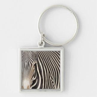 Zebra Stripes Keychain