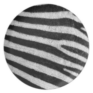 Zebra Stripes Photography Pattern Plate