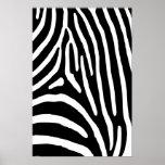 Zebra Stripes Print