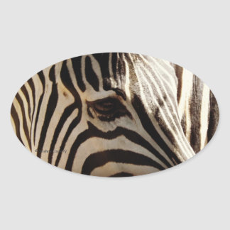 "Zebra ""Stripes"" Oval Sticker"