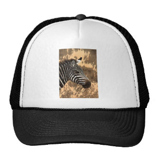 Zebra Stripes Trucker Hat
