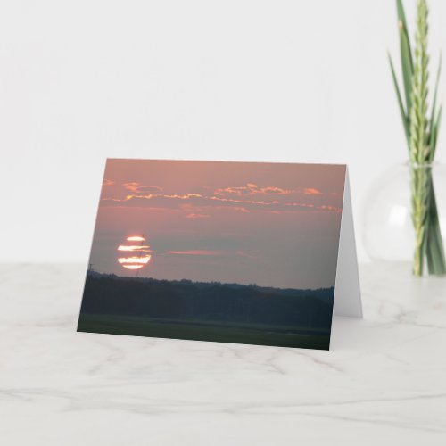 Zebra Sunset Card card