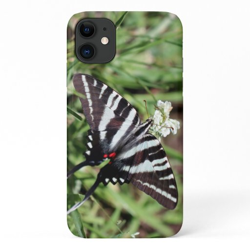 Zebra Swallowtail, Barely There iPhone 11. iPhone 11 Case