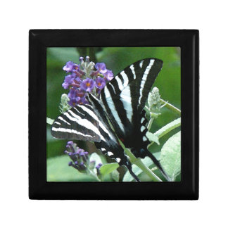 Zebra Swallowtail Butterfly Flowers Floral Jewelry Box