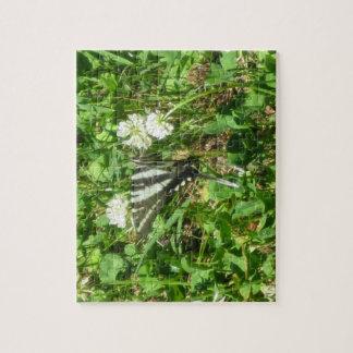 zebra swallowtail jigsaw puzzle