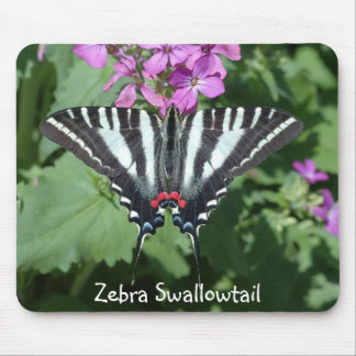 Zebra Swallowtail on flower Mouse Pad