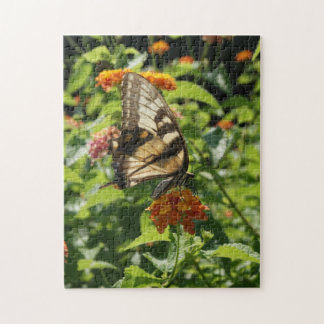 Zebra Swallowtail puzzle