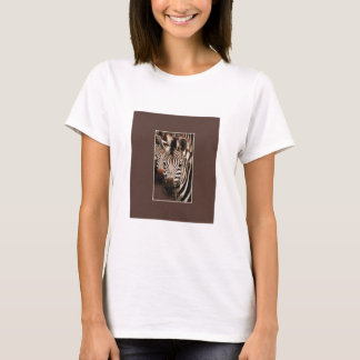 Zebra t-shirts for all