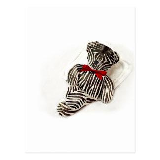Zebra teddy postcard