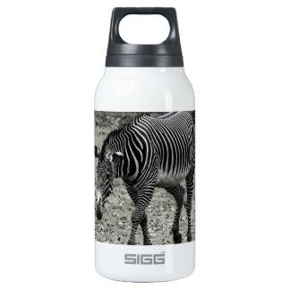 Zebra Thermos Bottle