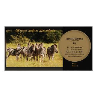 Zebra travel agencies, safari lodges, zoologists photo card template