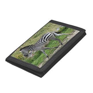 Zebra Trifold Nylon Wallet