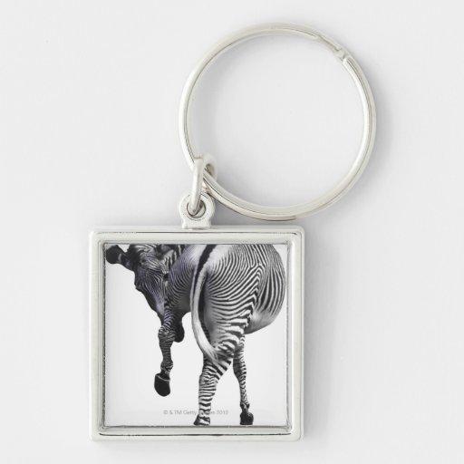 Zebra turning around keychain