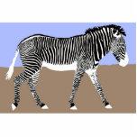 zebra walking photo cut out