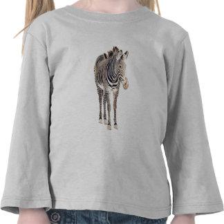 Zebra Watercolor Wildlife Art Tee Shirt
