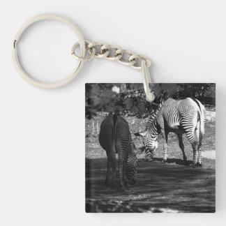 Zebra Wildlife Animal Photo Acrylic Key Chain