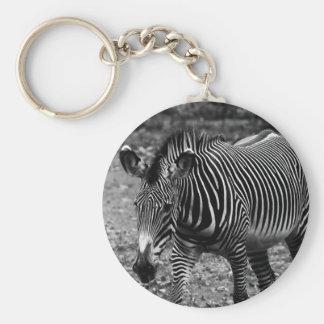 Zebra Wildlife Animal Photo Key Chains