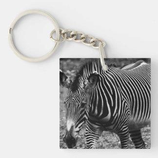 Zebra Wildlife Animal Photo Acrylic Key Chains
