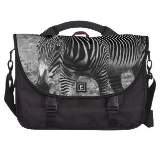 Zebra Wildlife Animal Photo Laptop Messenger Bag