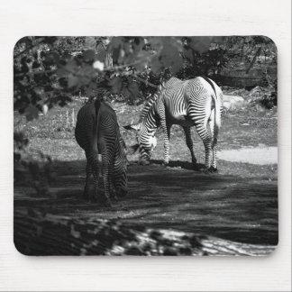 Zebra Wildlife Animal Photo Mouse Pad