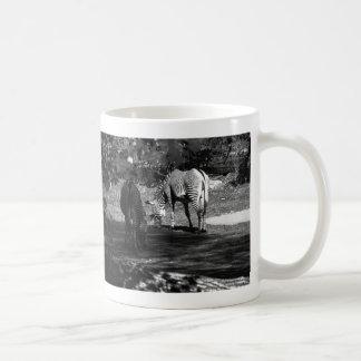 Zebra Wildlife Animal Photo Classic White Coffee Mug