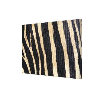 Zebra Wildlife Animal Stripes Wrapped Canvas Art