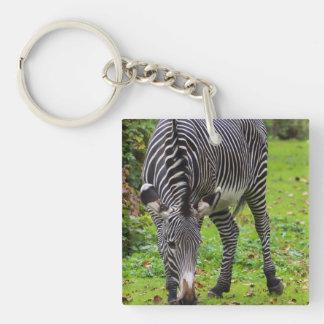 Zebra Wildlife Photo Acrylic Key Chain