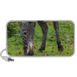 Zebra Wildlife Photo Speaker System