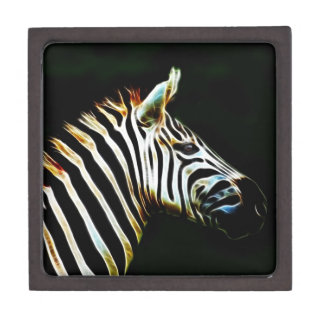 Zebra with black and white stripes in Africa Premium Trinket Boxes