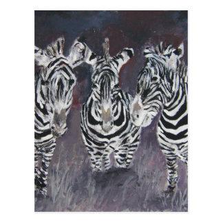 zebra zoo animal wildlife painting art gifts postcard