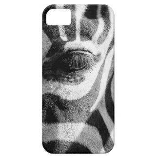 Zebra Zoom iPhone SE/5/5s Case