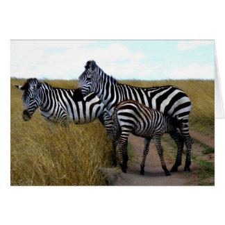 ZEBRAS AND BABY ZEBRA CARD
