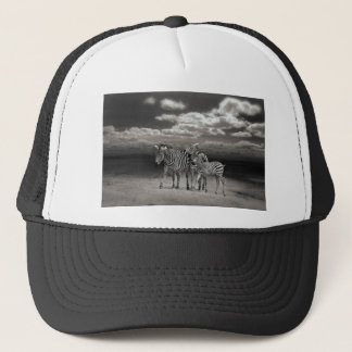 Zebras Animal Gifts Trucker Hat