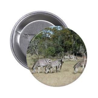 Zebras Pin