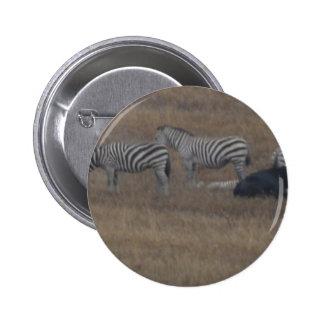 zebras & cows in field button