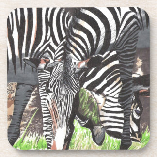 Zebras Drink Coaster