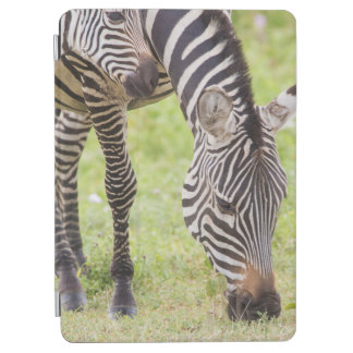 Zebras Eating iPad Air Cover