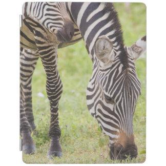 Zebras Eating iPad Smart Cover