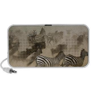 zebras (Equus burchelli) and wildebeest Laptop Speaker