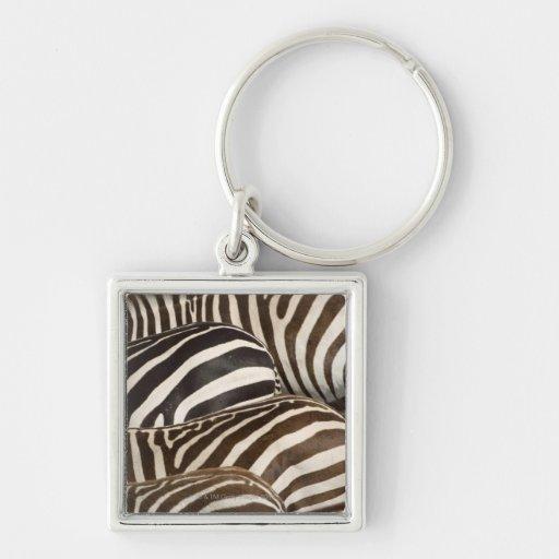 Zebras' (Equus quagga) stripes, Masai Mara Key Chain