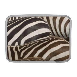 Zebras' (Equus quagga) stripes, Masai Mara MacBook Sleeve