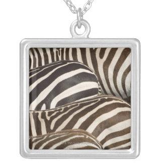 Zebras' (Equus quagga) stripes, Masai Mara, Personalized Necklace