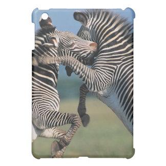 Zebras fighting (Equus burchelli) iPad Mini Covers