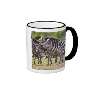 Zebras herding in the fields of the Maasai Mara Ringer Mug